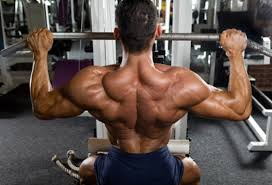 The Best Muscle Building Workout