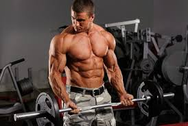 Weight Lifting Routines For Men