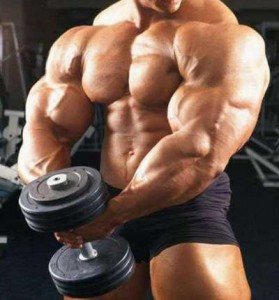 bodybuilding workouts for size